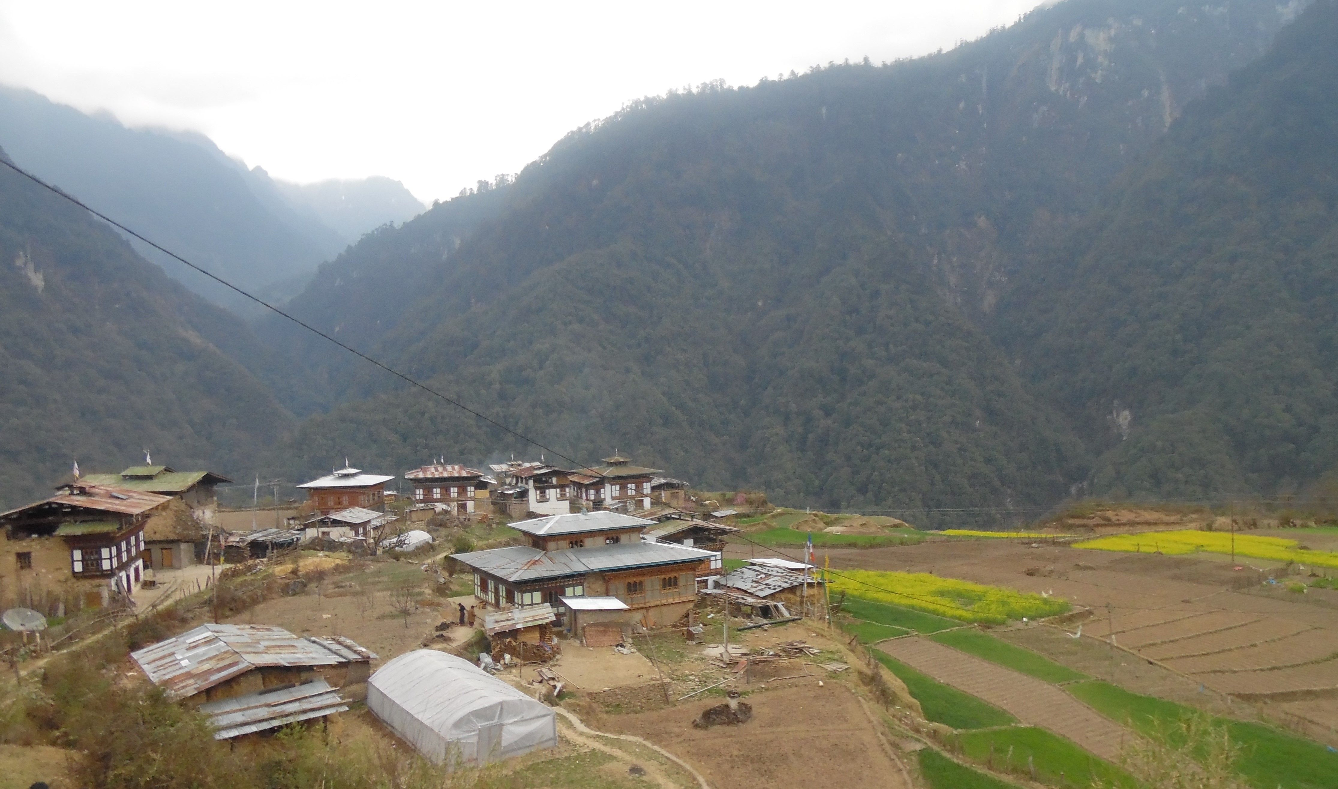 Damji village in Khamaed Gewog